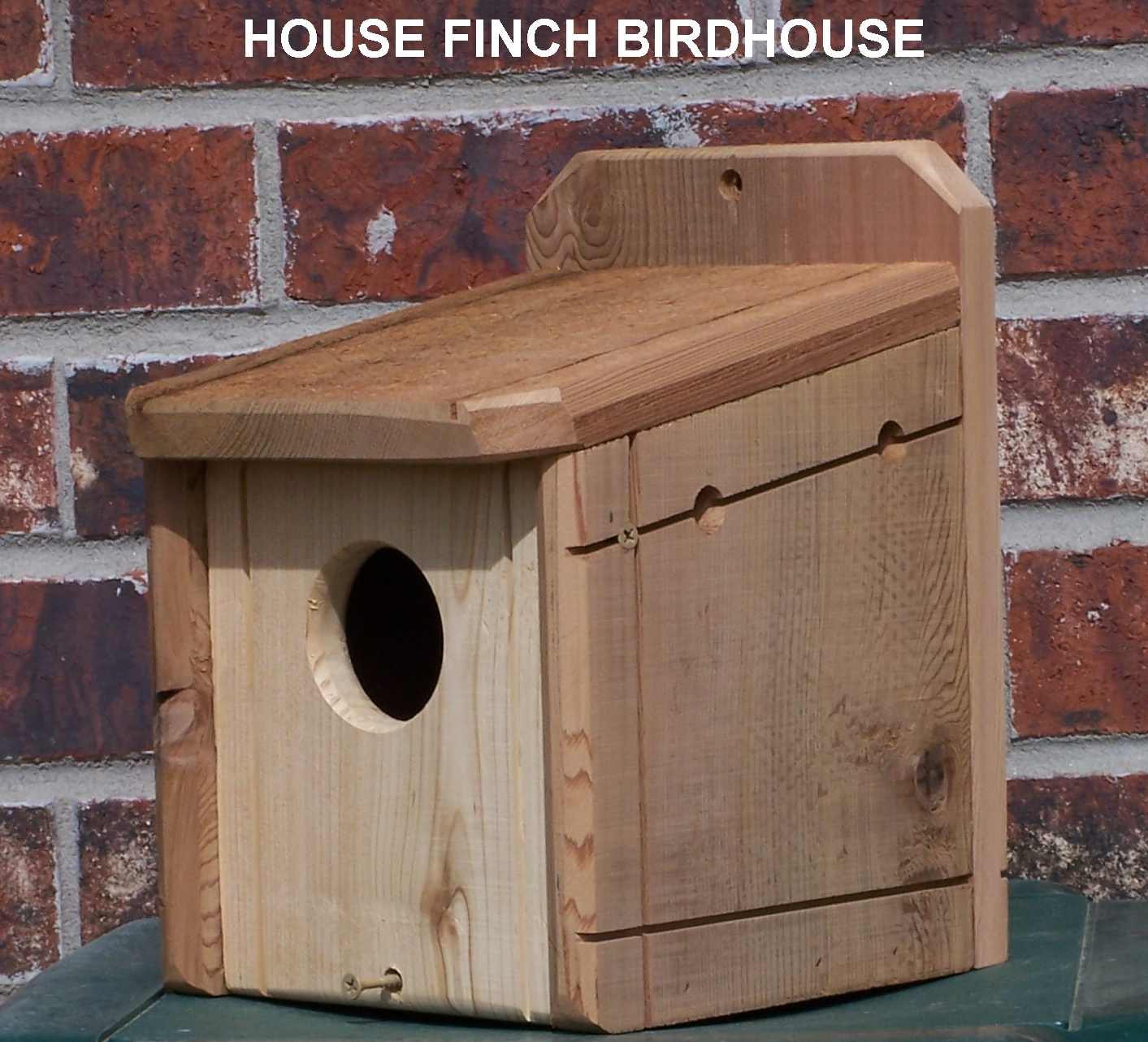 finch house pitchure